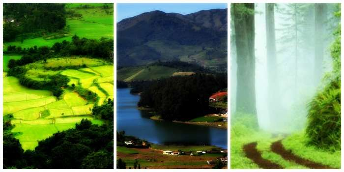 Coorg, Ooty, Kodaikanal for a serene scenic getaway in South India