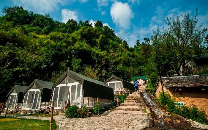 The beautiful camps of Hail Himalayas in Shoghi in Shimla ss16112017