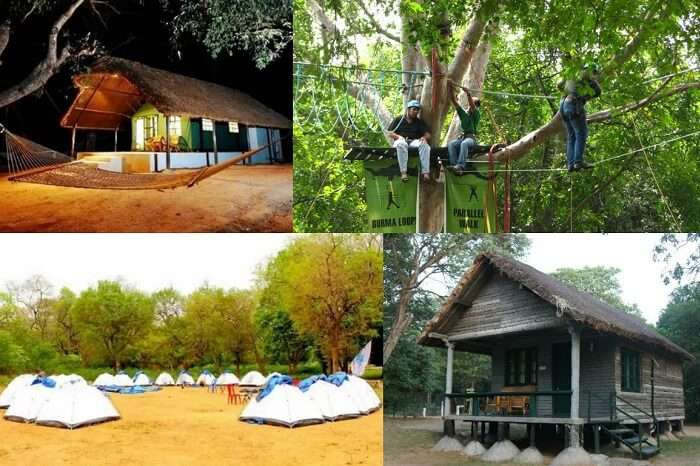 Different shots from the activities and stay options at Bheemeshwari camping site near Bangalore